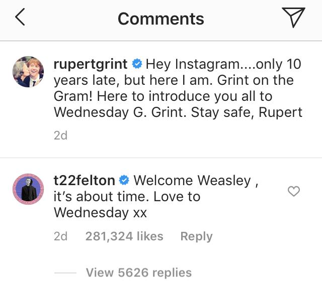 tom felton comment