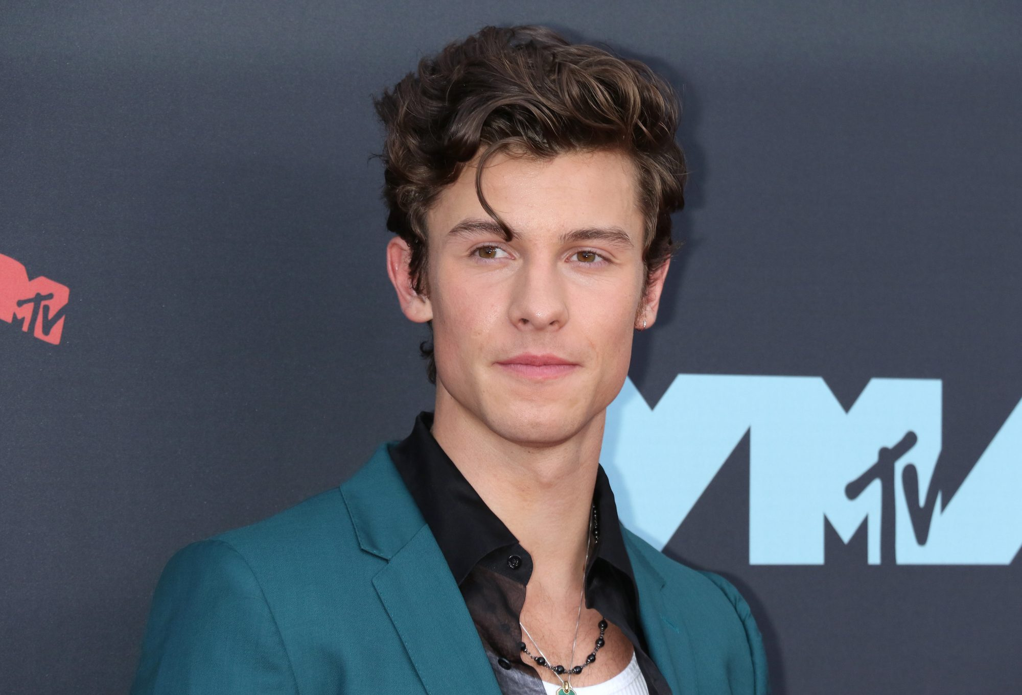 shawn mendes sexuality