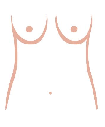 slender-boobs