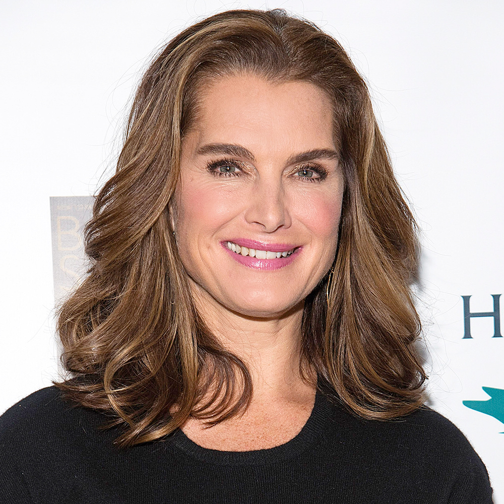 """Brooke Shields """"Mammarazzi"""" Event Hosted By The Moms"""