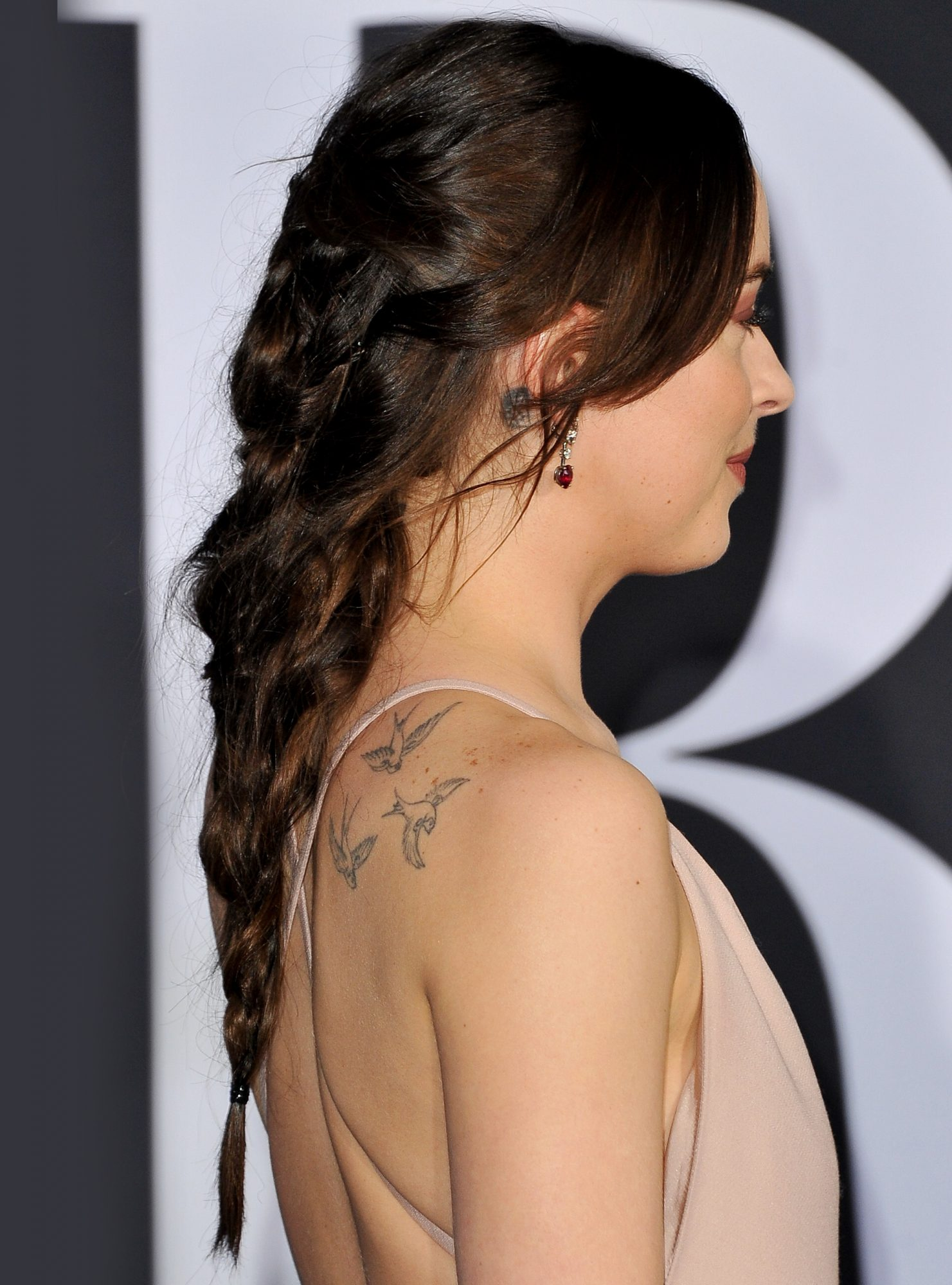 Dakota Johnson Braid - Embed 2