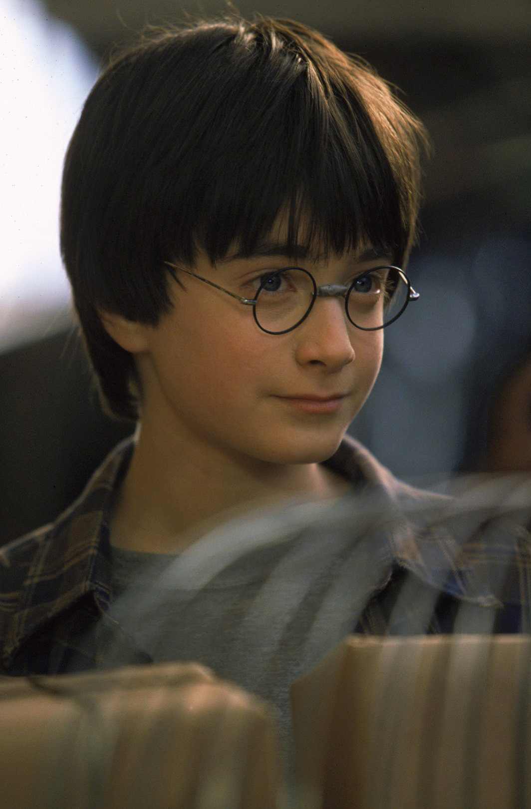 Harry Potter Home - LEAD