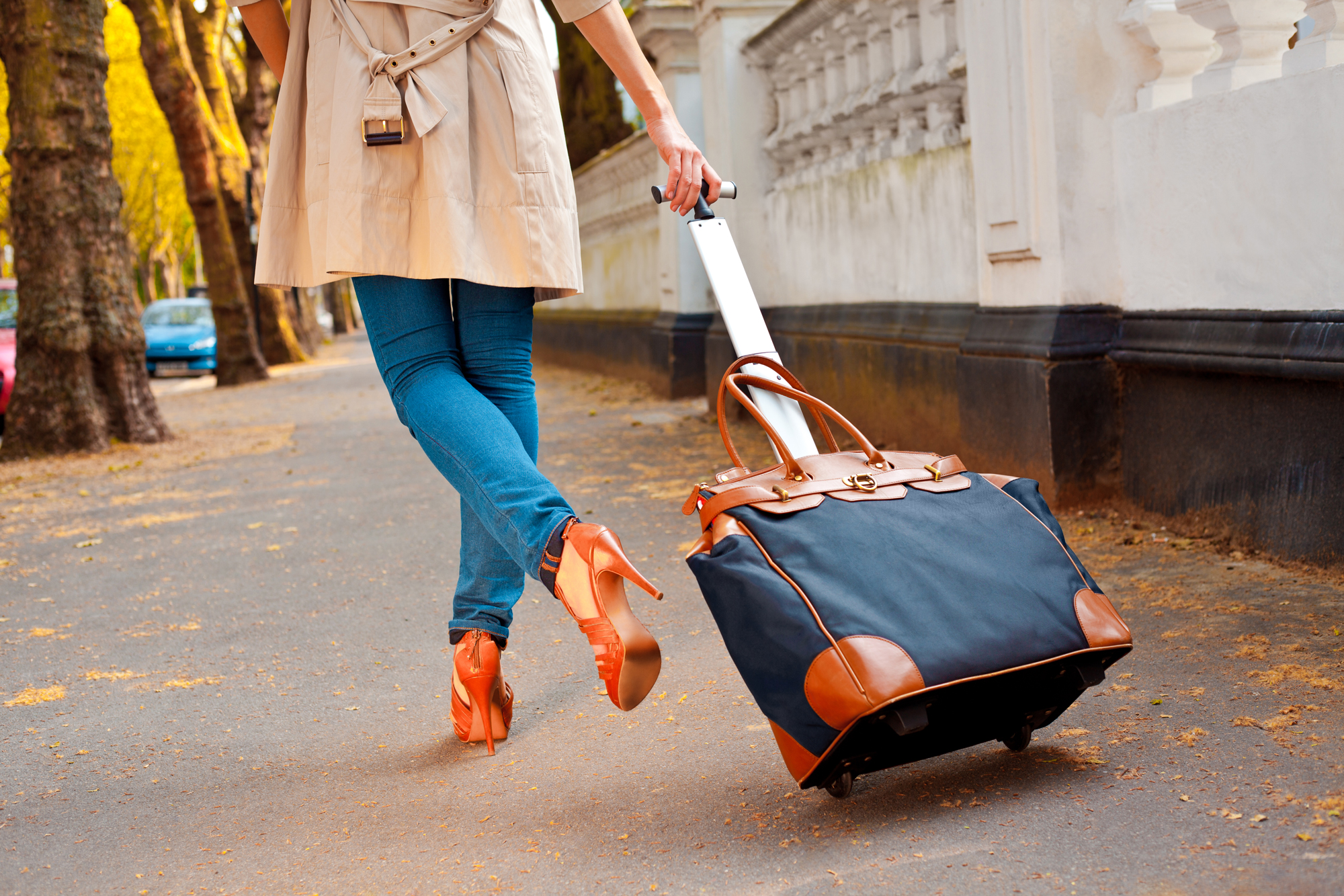 Travel Agents Bring With Them - Lead