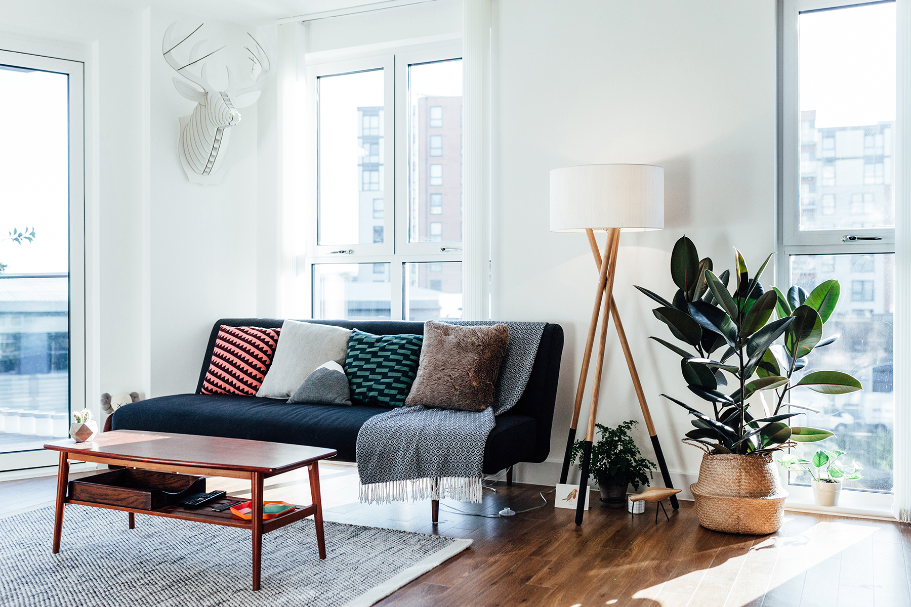 Living room with white walls, gray area rug