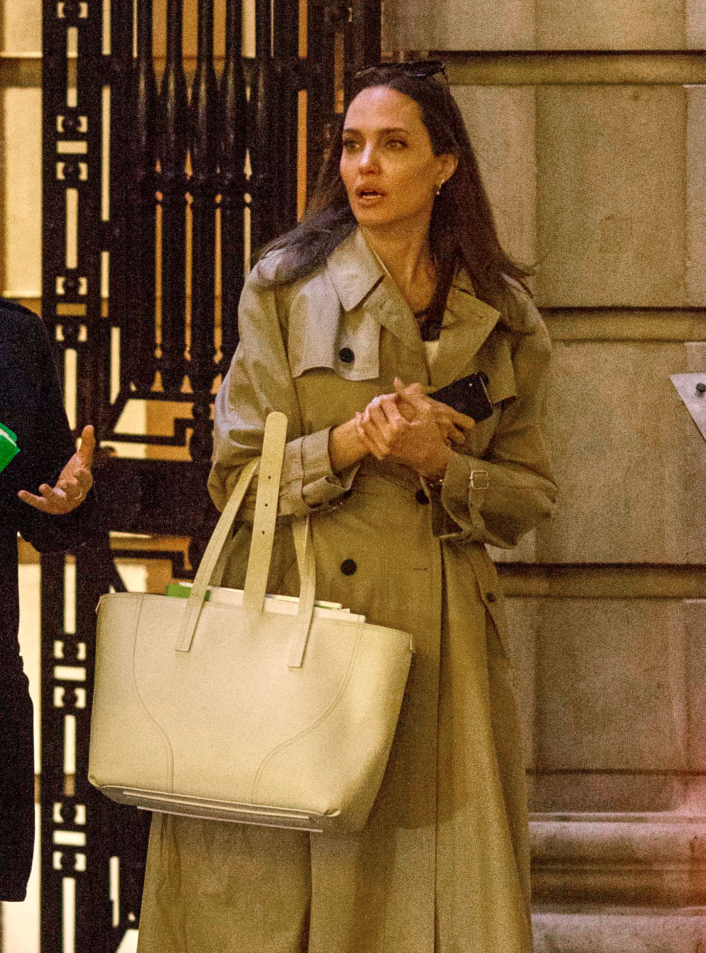 Angelina Jolie Senreve Bag