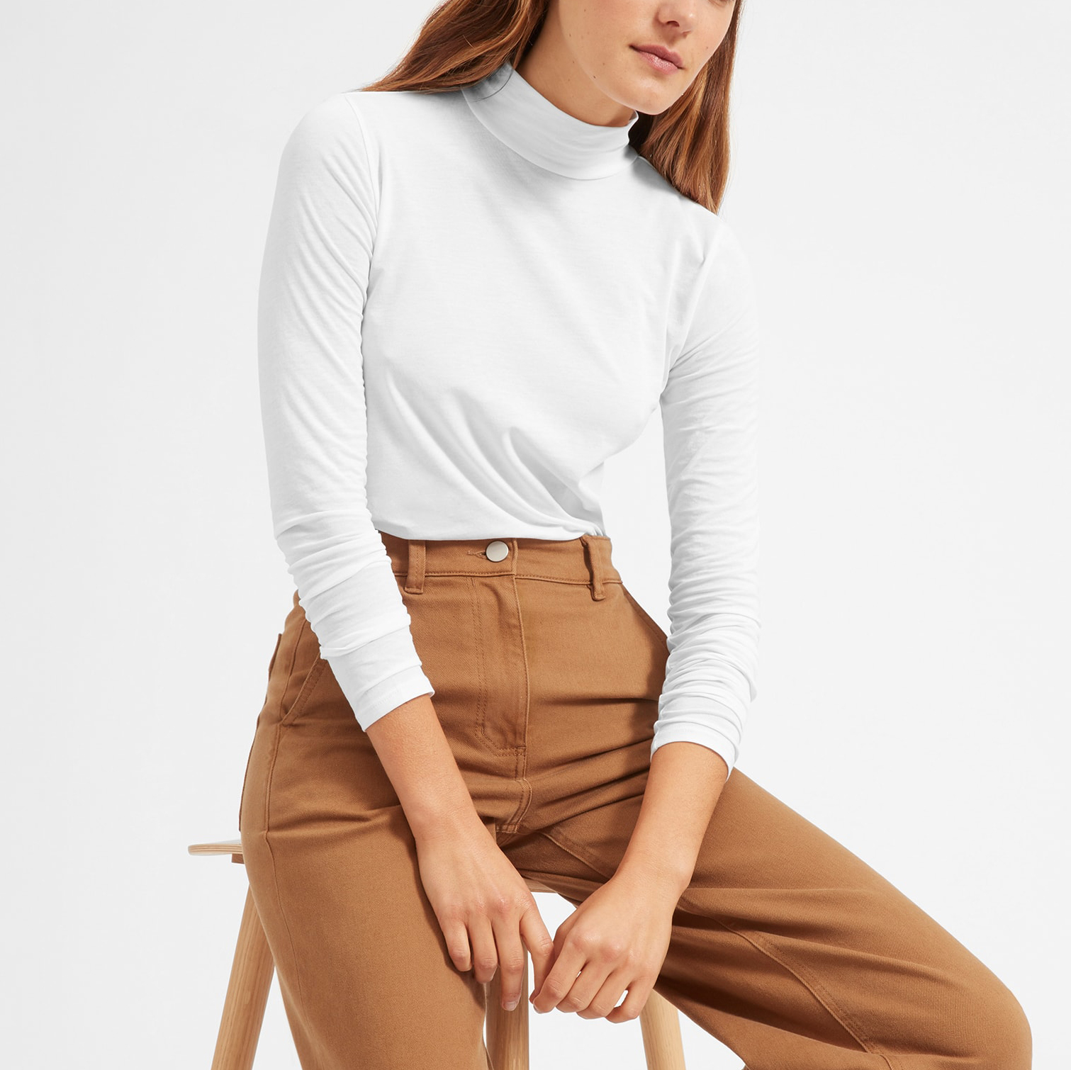 Everlane Pima Stretch Turtleneck
