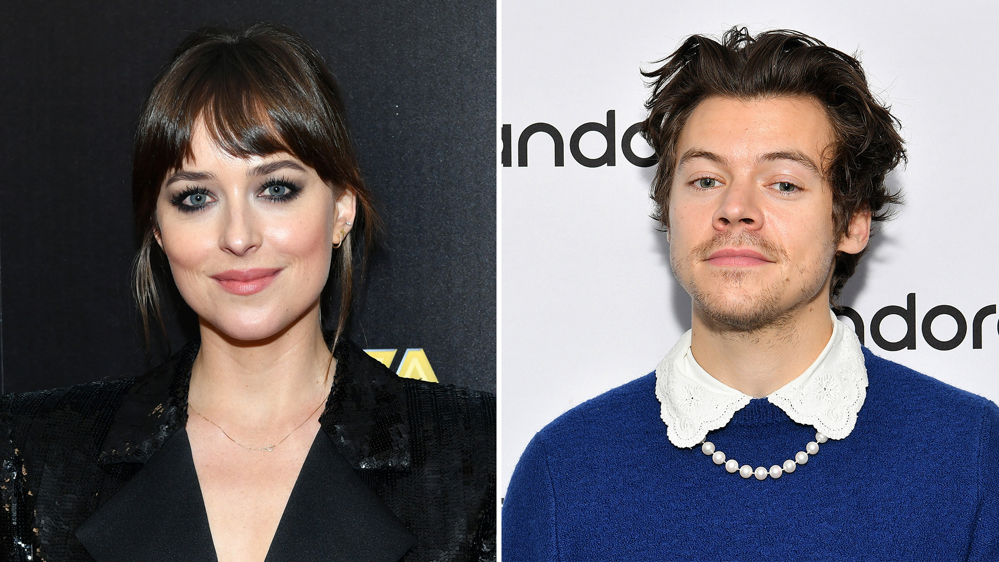 NEWS: Harry Styles Is Joining Dakota Johnson in a New Movie