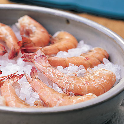 Fresh Shrimp on Ice