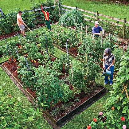 Happy, Healthy Gardening