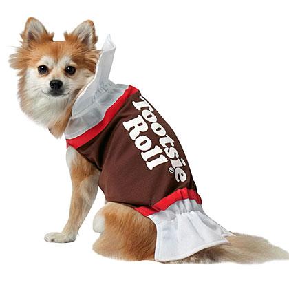 Tootsie Roll Dog Costume
