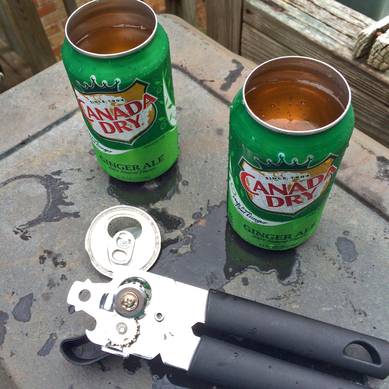 ginger-ale-cans.jpg
