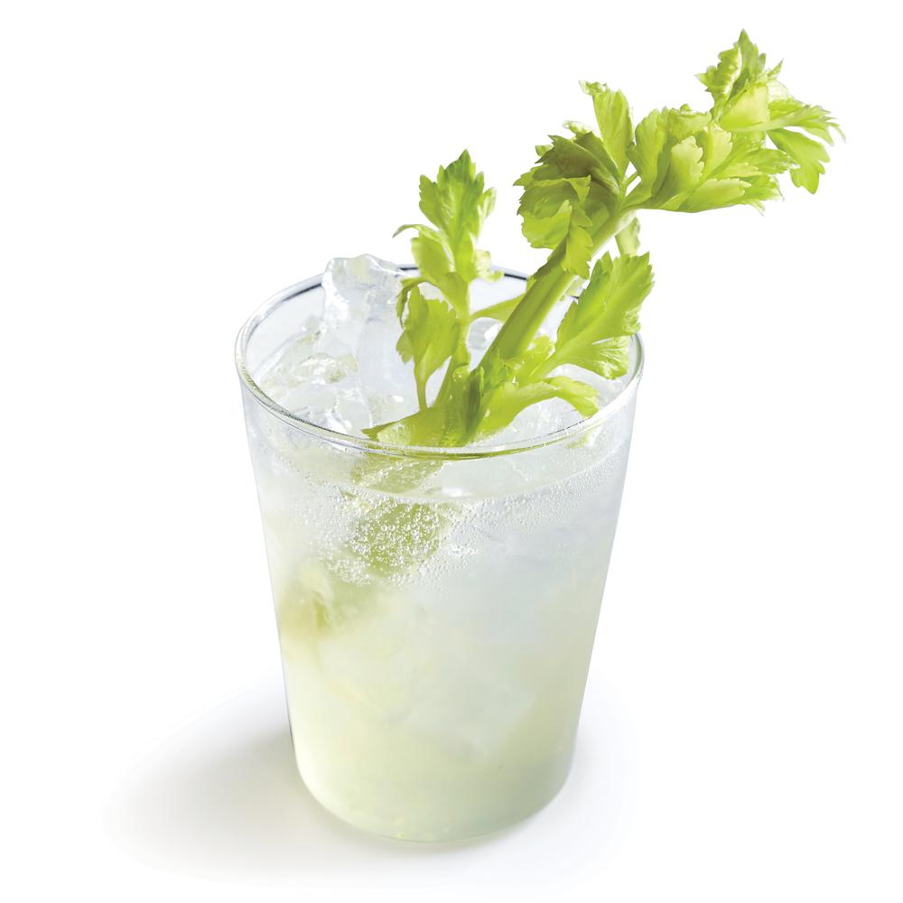 Celery Gin Fizz