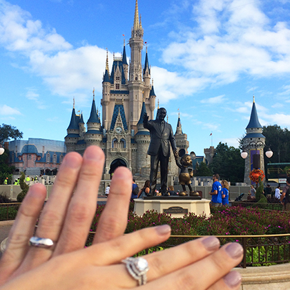 dinsey-castle-with-rings.jpg