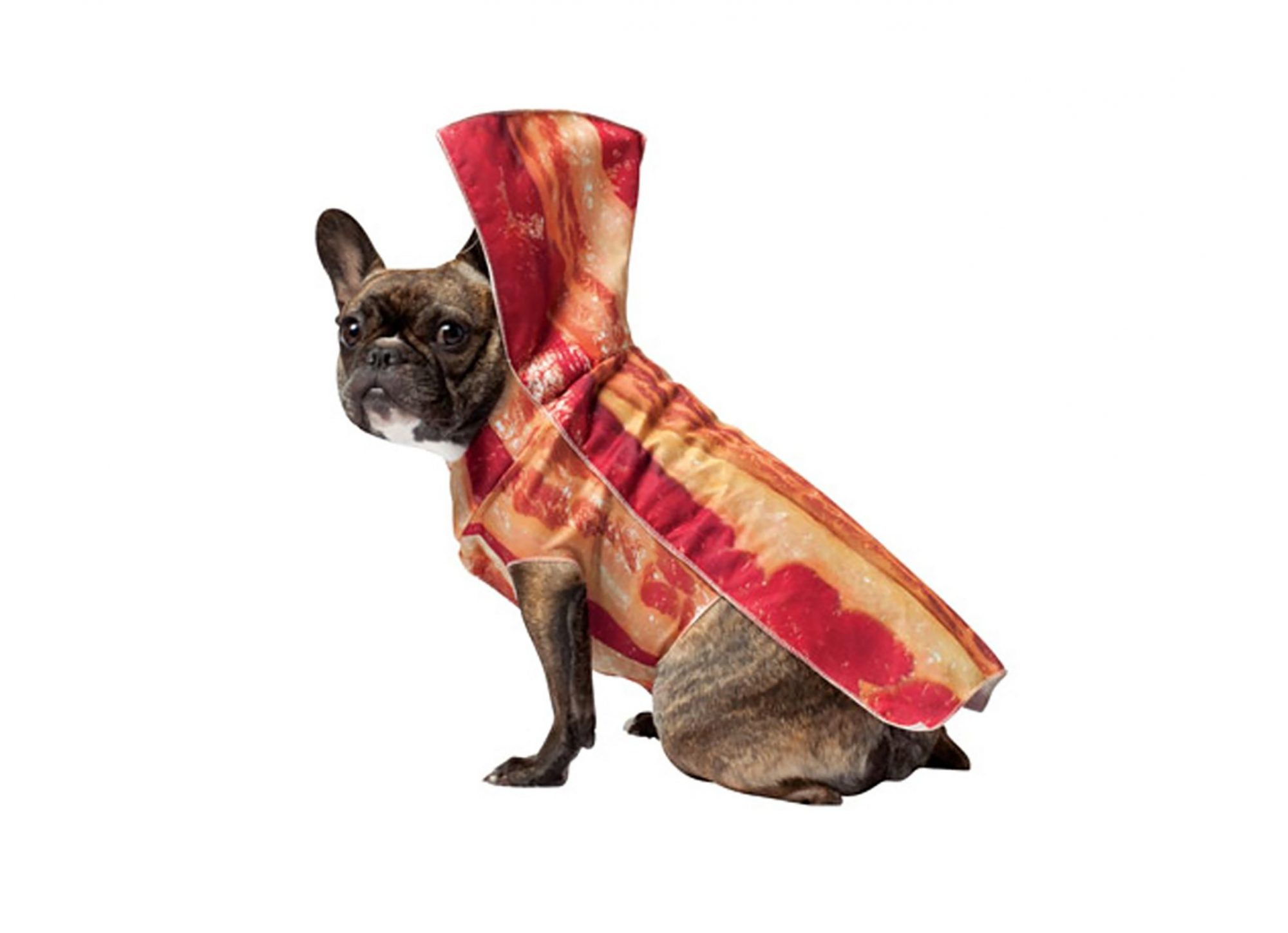 1709w-Bacon-Dog-Costume.jpg