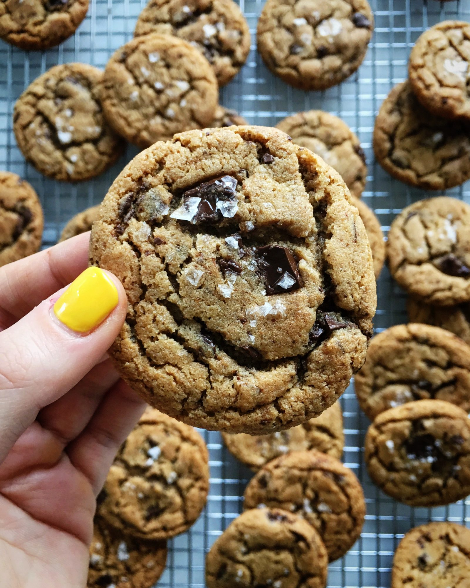 cookie.jpeg