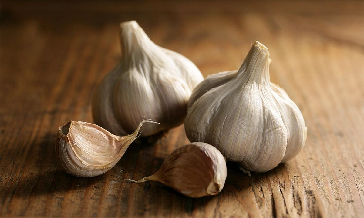 EC:  assets%2Fmessage-editor%2F1479414667760-garlic