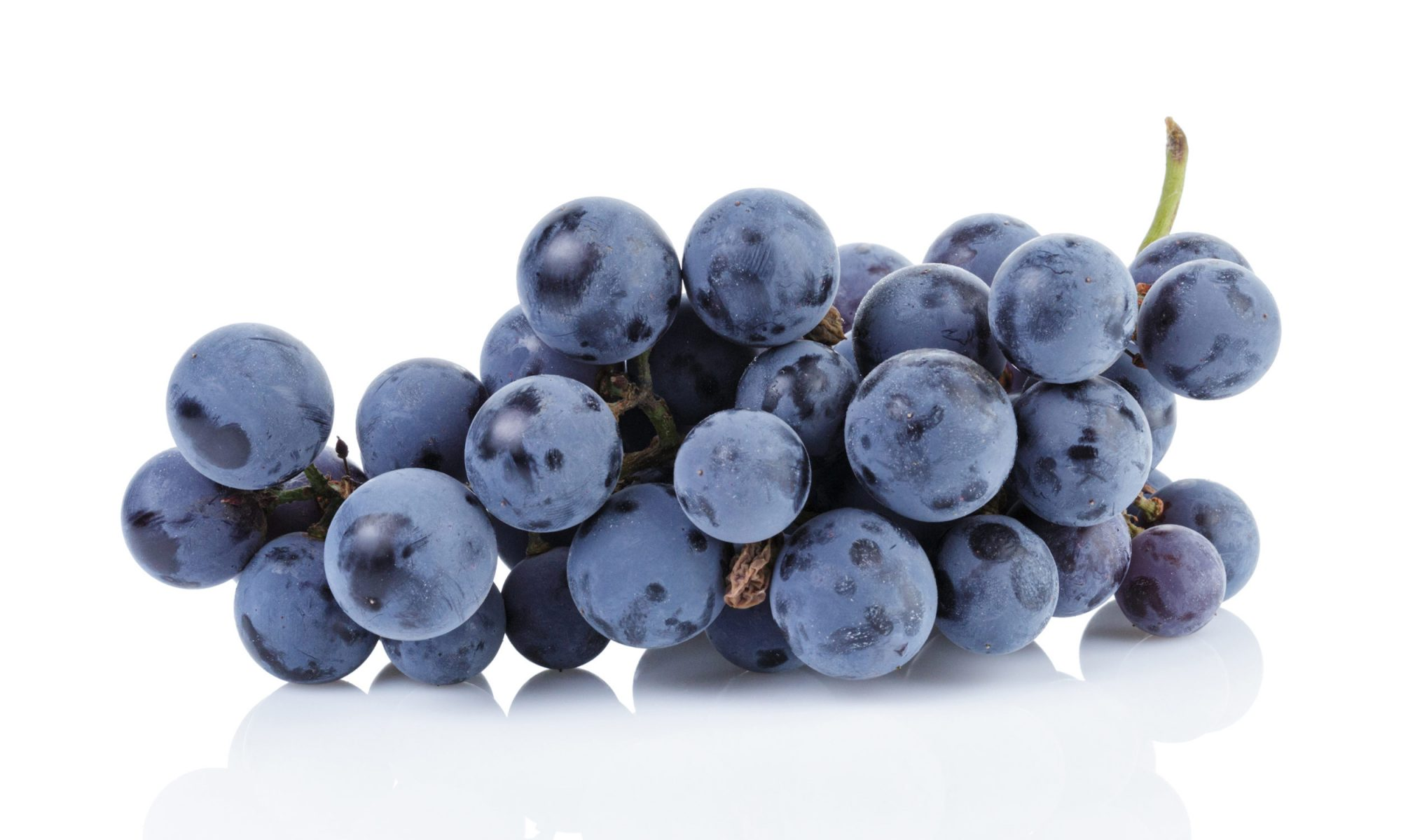 EC:  assets%2Fmessage-editor%2F1483503797470-grapes-inline