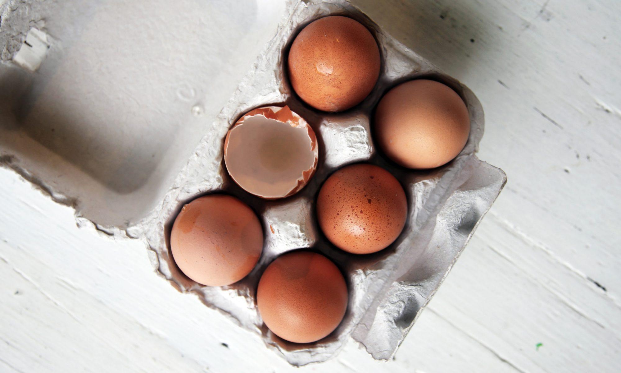 EC: Dutch Farm Claims to Produce First CO2-Neutral Egg