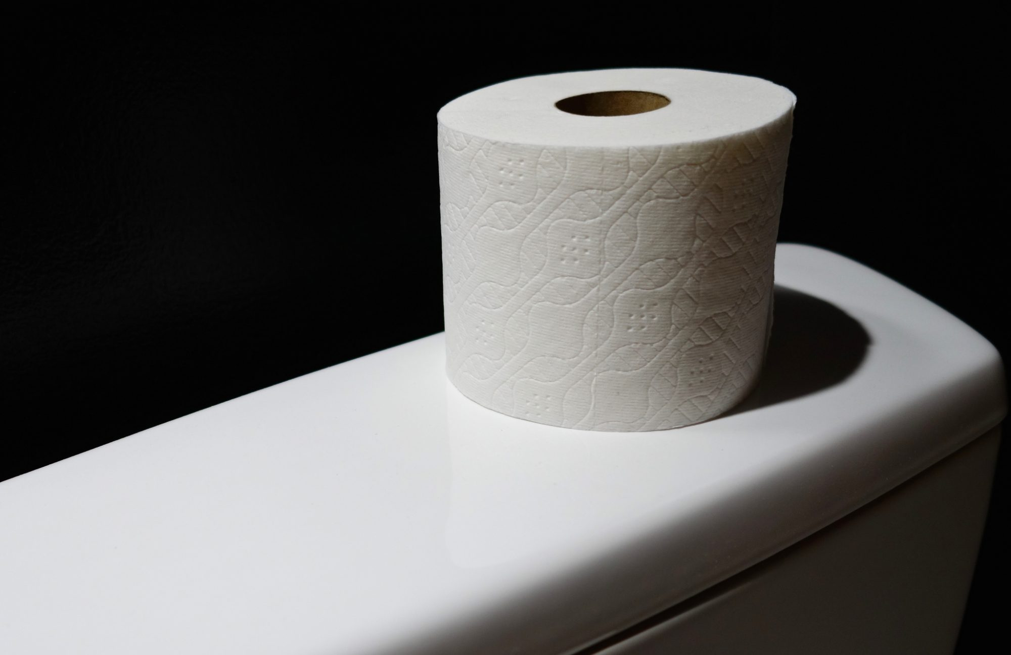 EC: Italy Now Has Toilet Paper Made of Milk