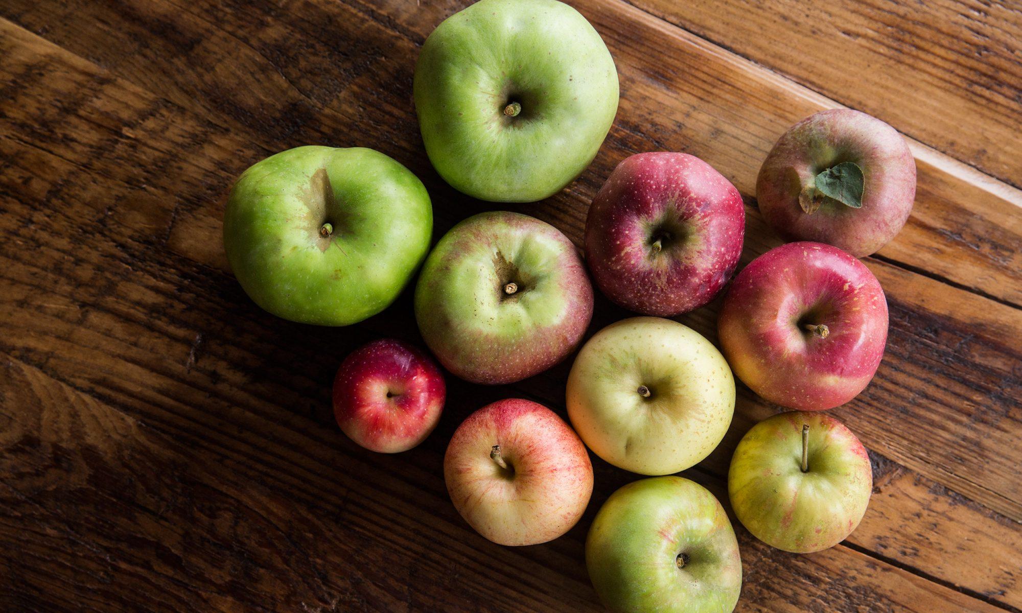 EC: 12 Apple Varieties You Should Know