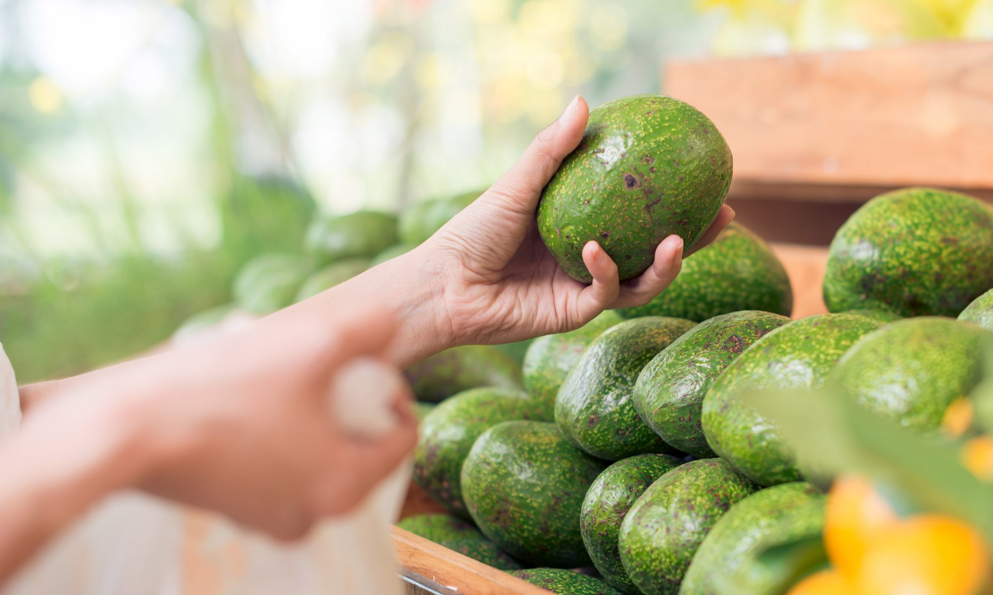 EC: The Price of Avocados Is High Because You're Obsessed With Them