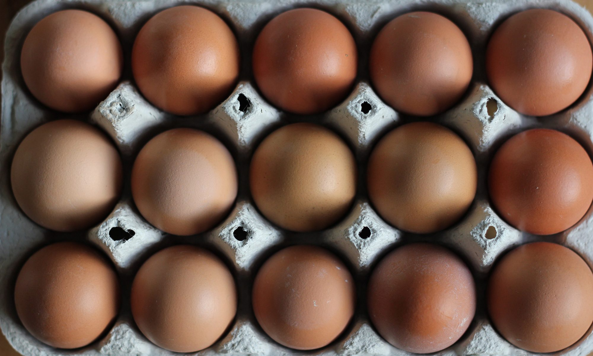 EC: Are Cage-Free Eggs Really Better for the Hens?