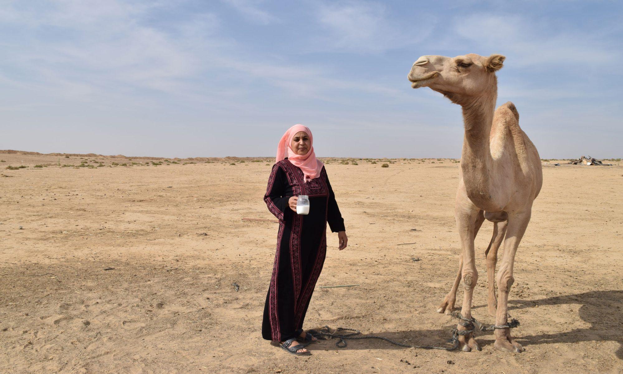 EC: The Rise of Camel Milk