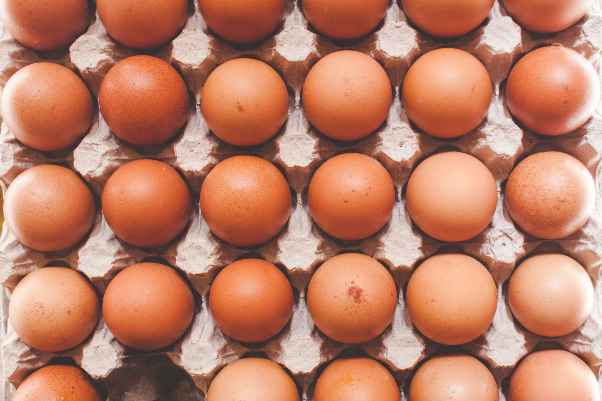 EC: Fake Chinese Eggs Are a Big Problem in India