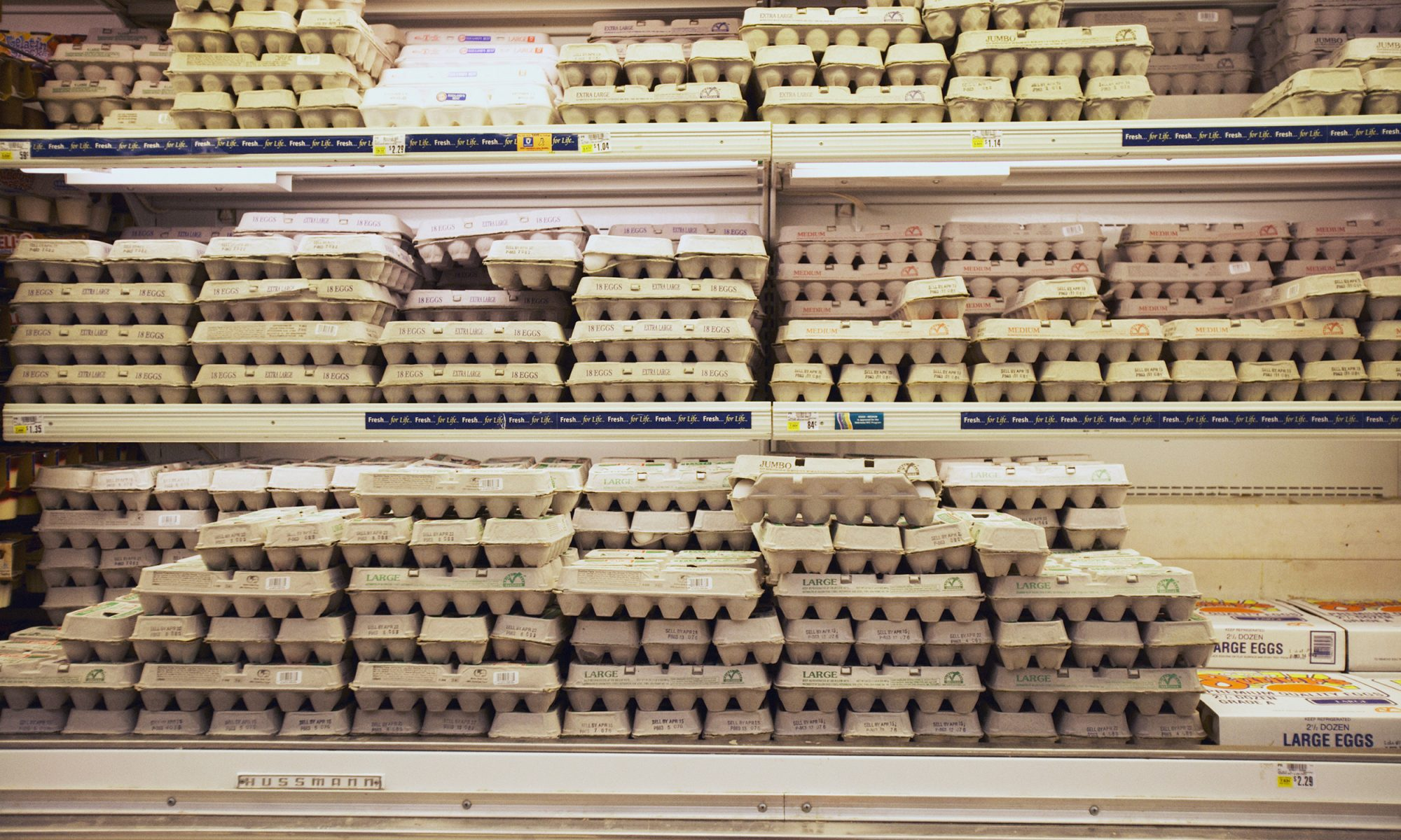 EC: This Is Why Eggs Are Refrigerated in the US