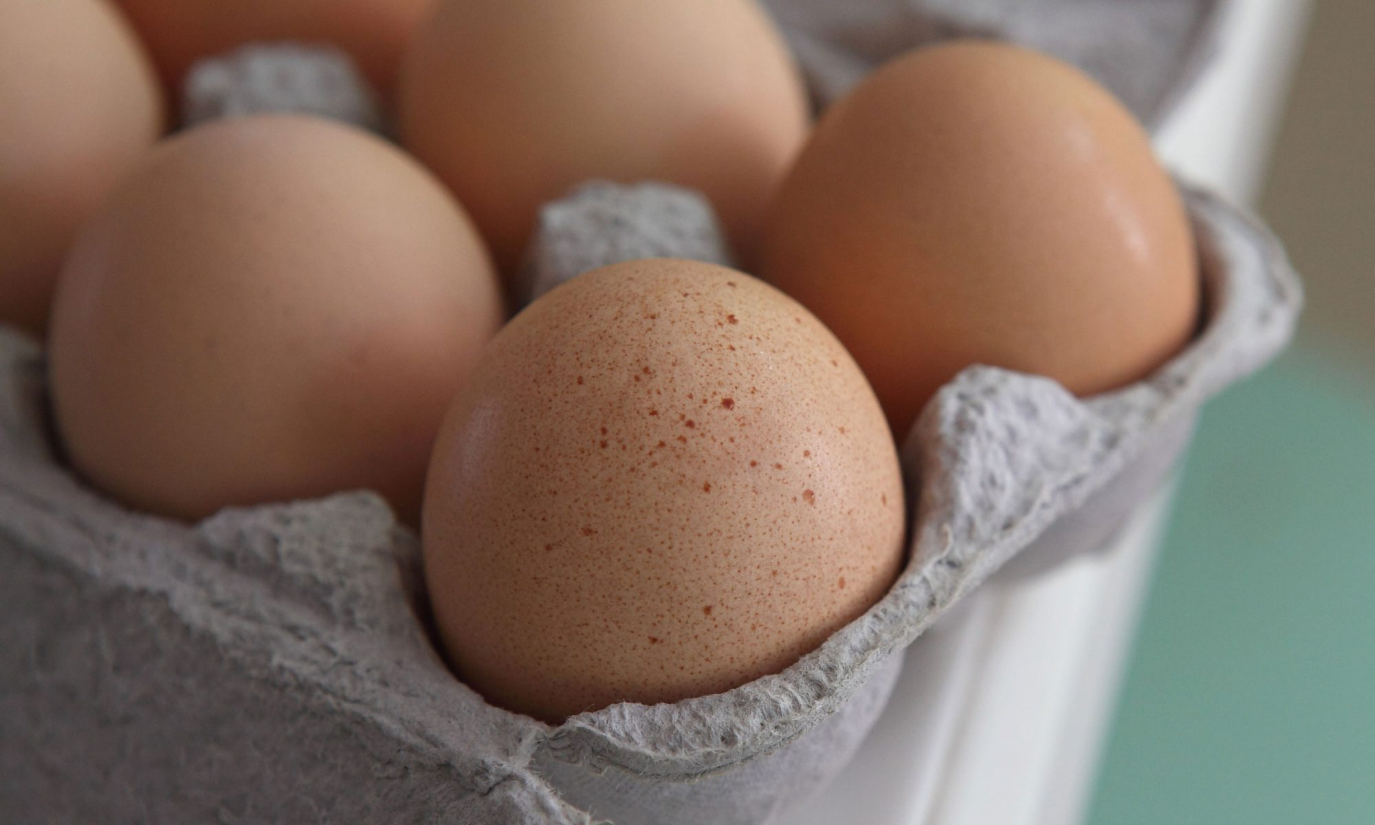 EC: How One Politician Nearly Broke the British Egg Industry