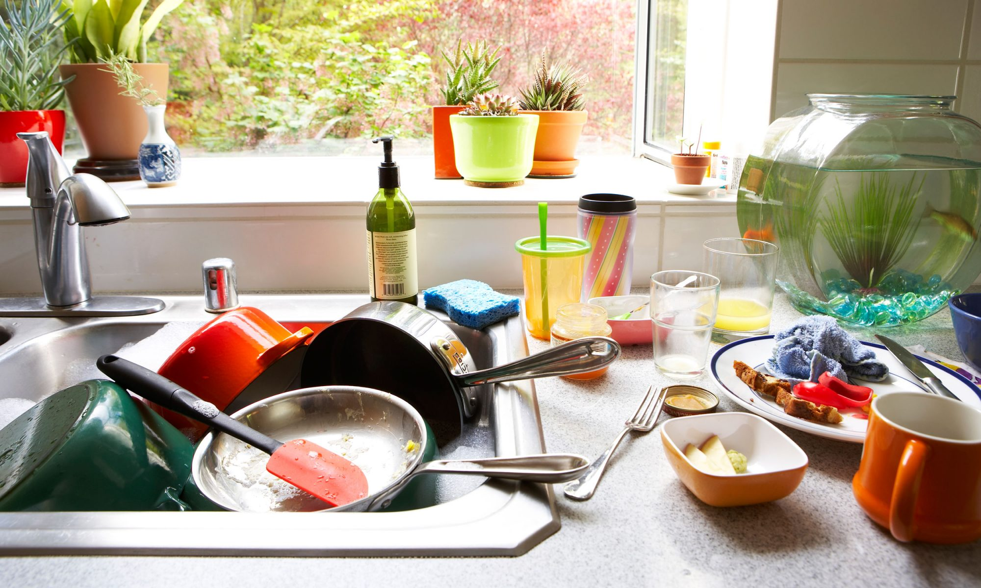 EC: 9 Gifts for the Person Who Can't Cook