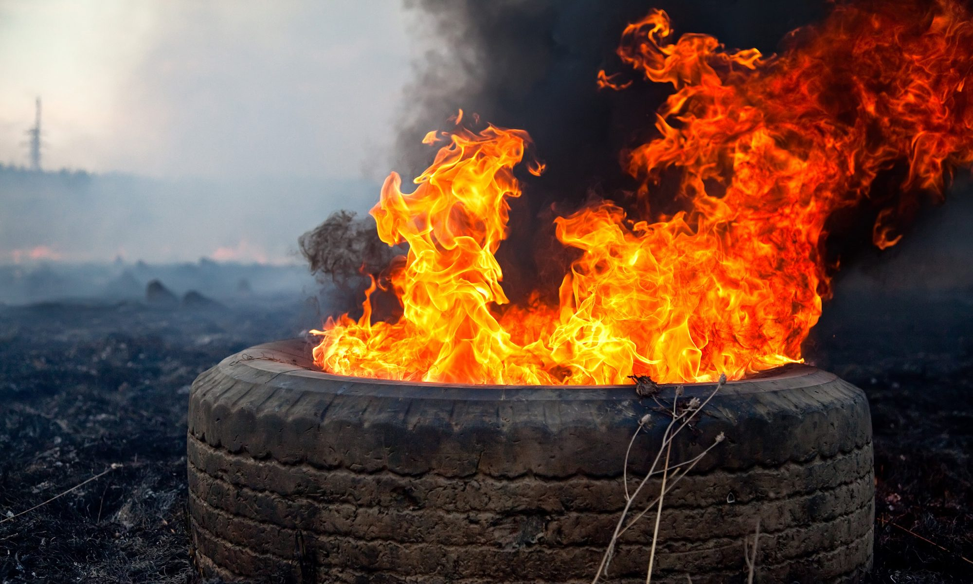 EC: What to Eat for Breakfast When the World Is a Giant Tire Fire