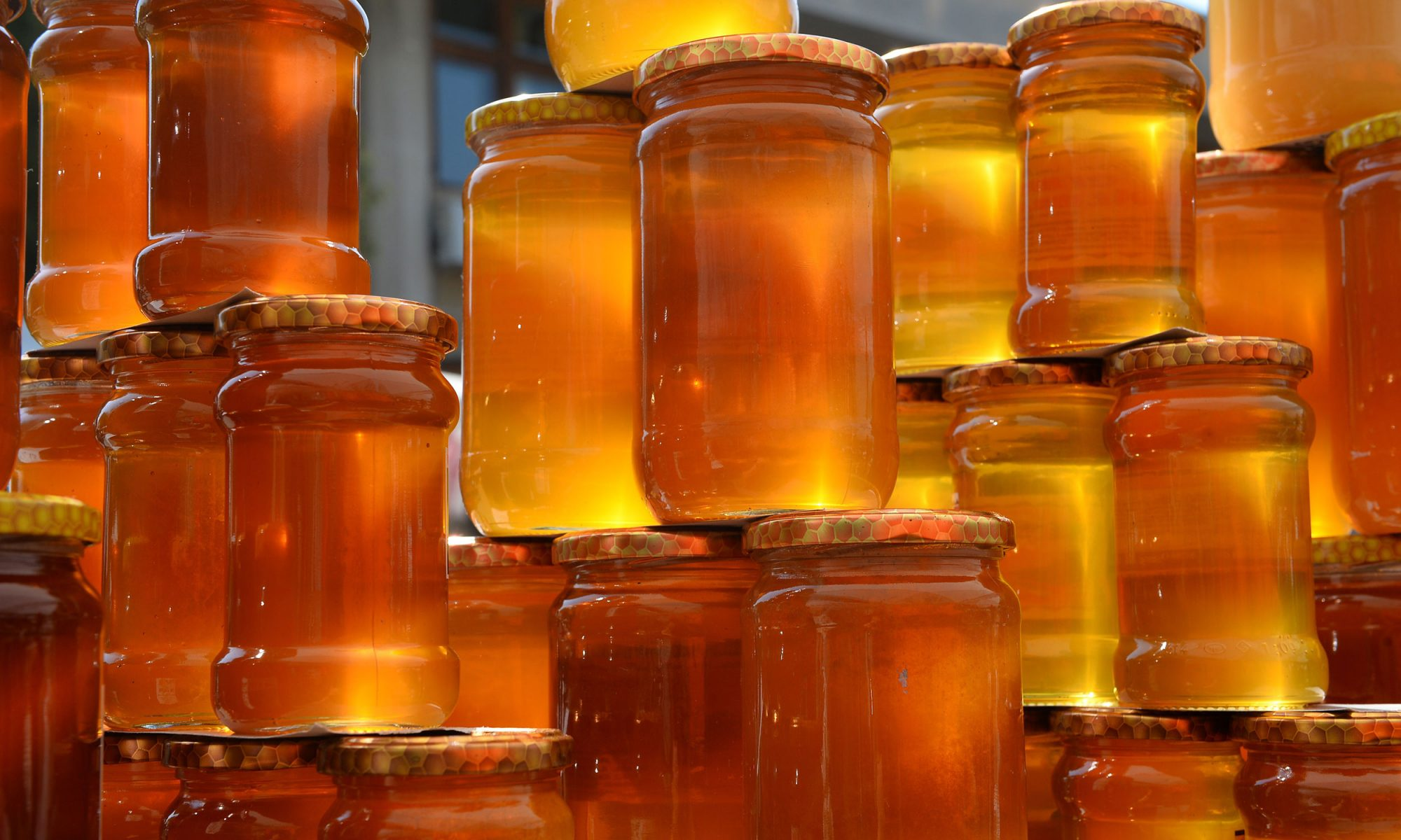 EC: Every Honey Tastes Different, So Eat It for Breakfast Every Day
