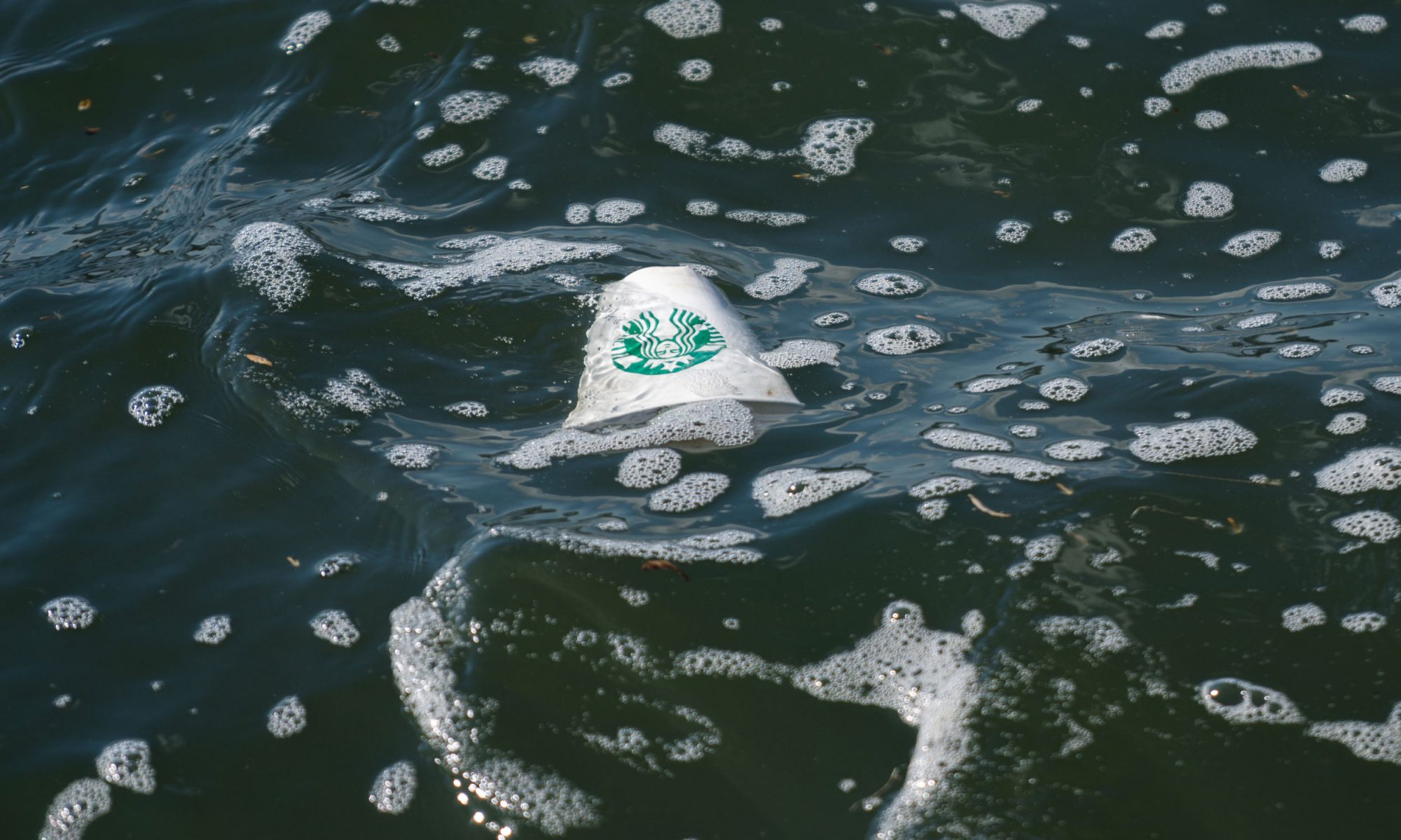 EC: Why Do We Care So Much About Starbucks Cups?