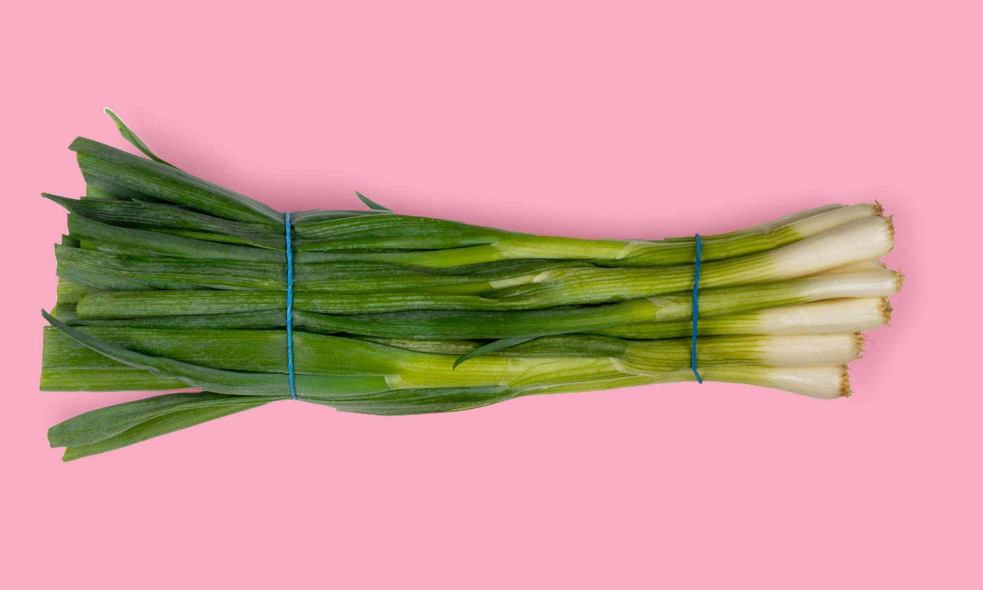 EC: How to Store Scallions So They Don't Wilt