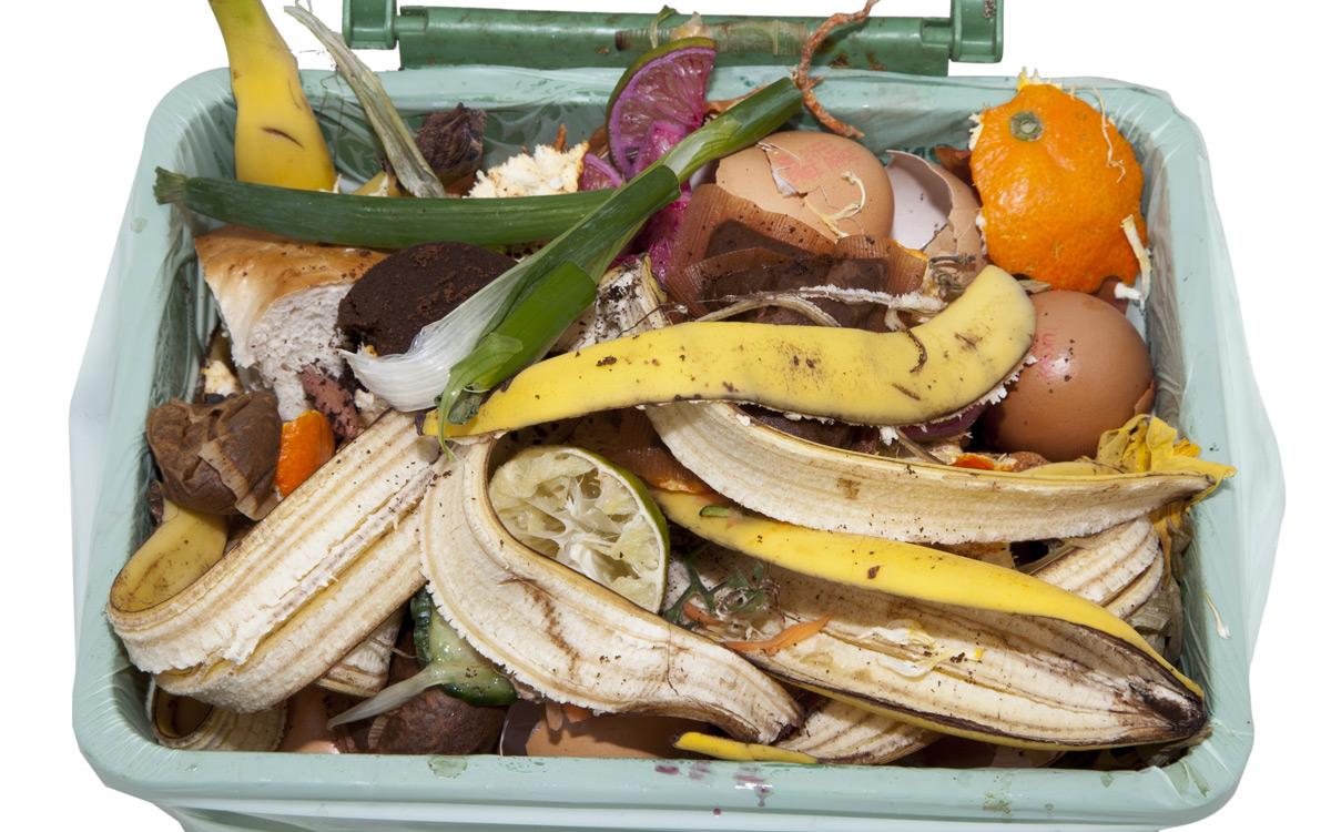 EC: How to Eat Food Scraps Like a Boss message-editor%2F1488553481565-trash-bin-inline