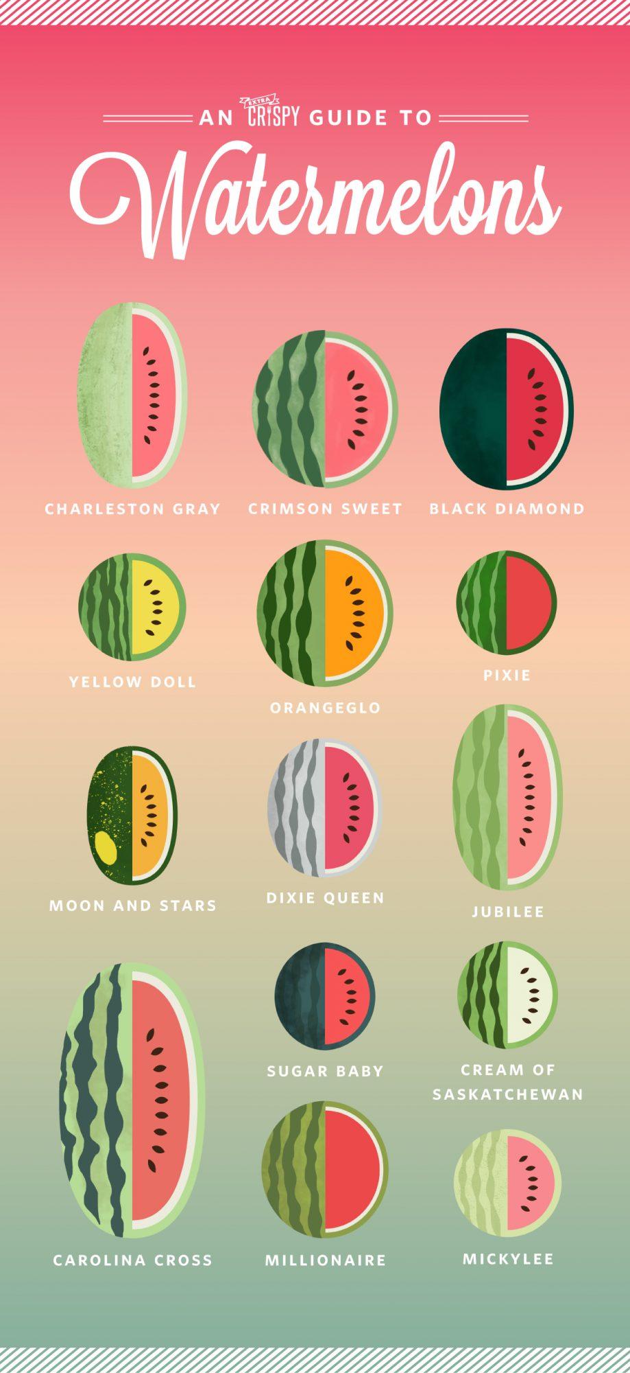 EC:  message-editor%2F1495715315596-watermelon-infographic