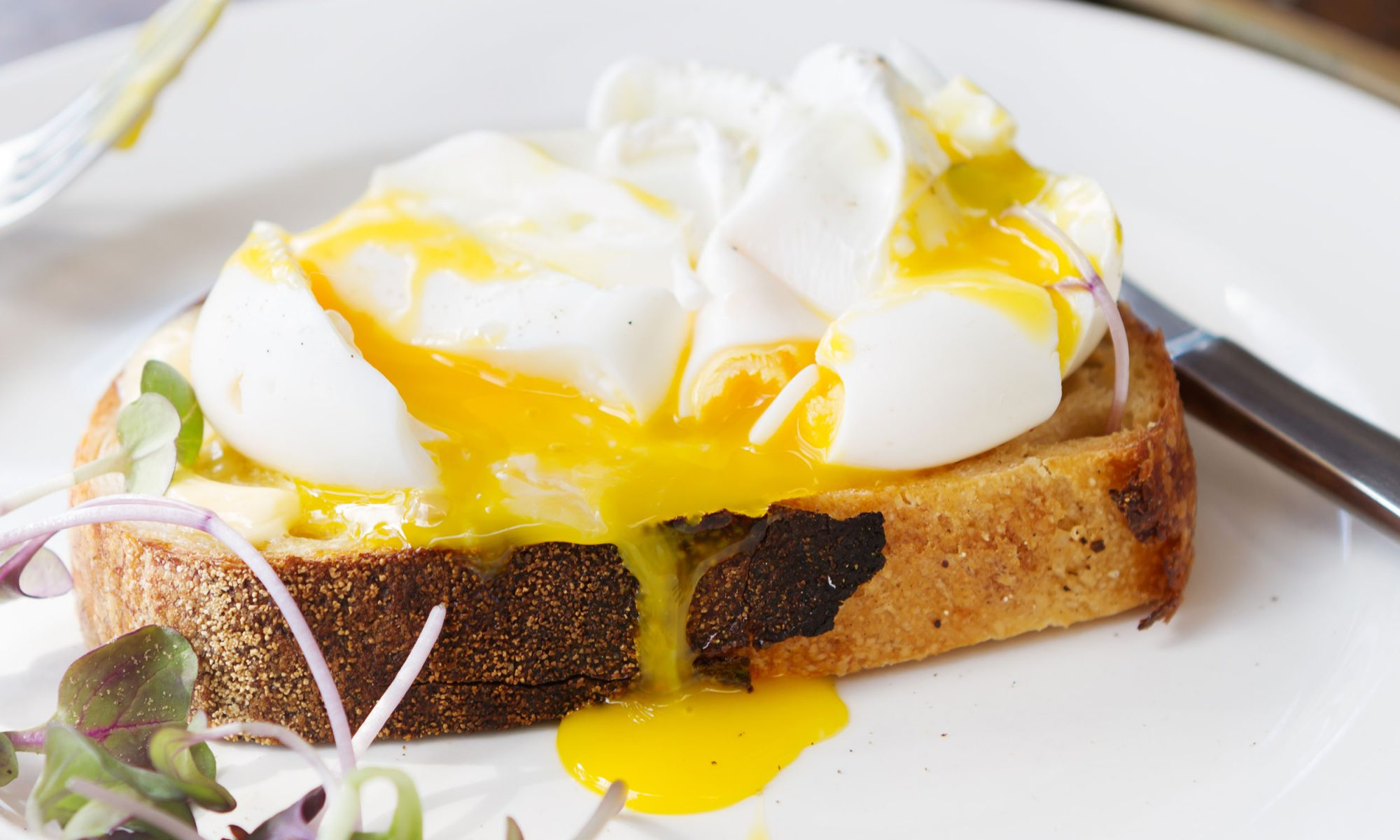 EC: Perfect Poached Eggs, No Special Gadgets Required
