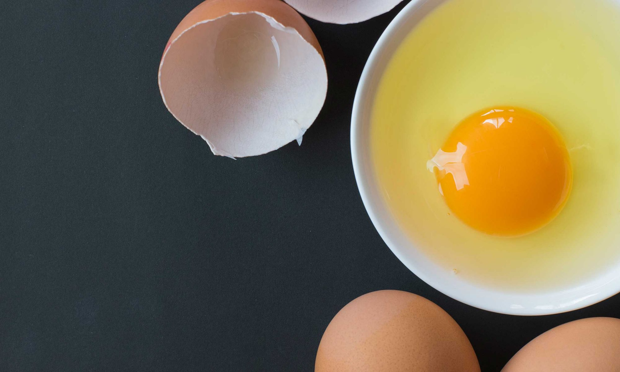 EC: How Much Protein Is in an Egg?