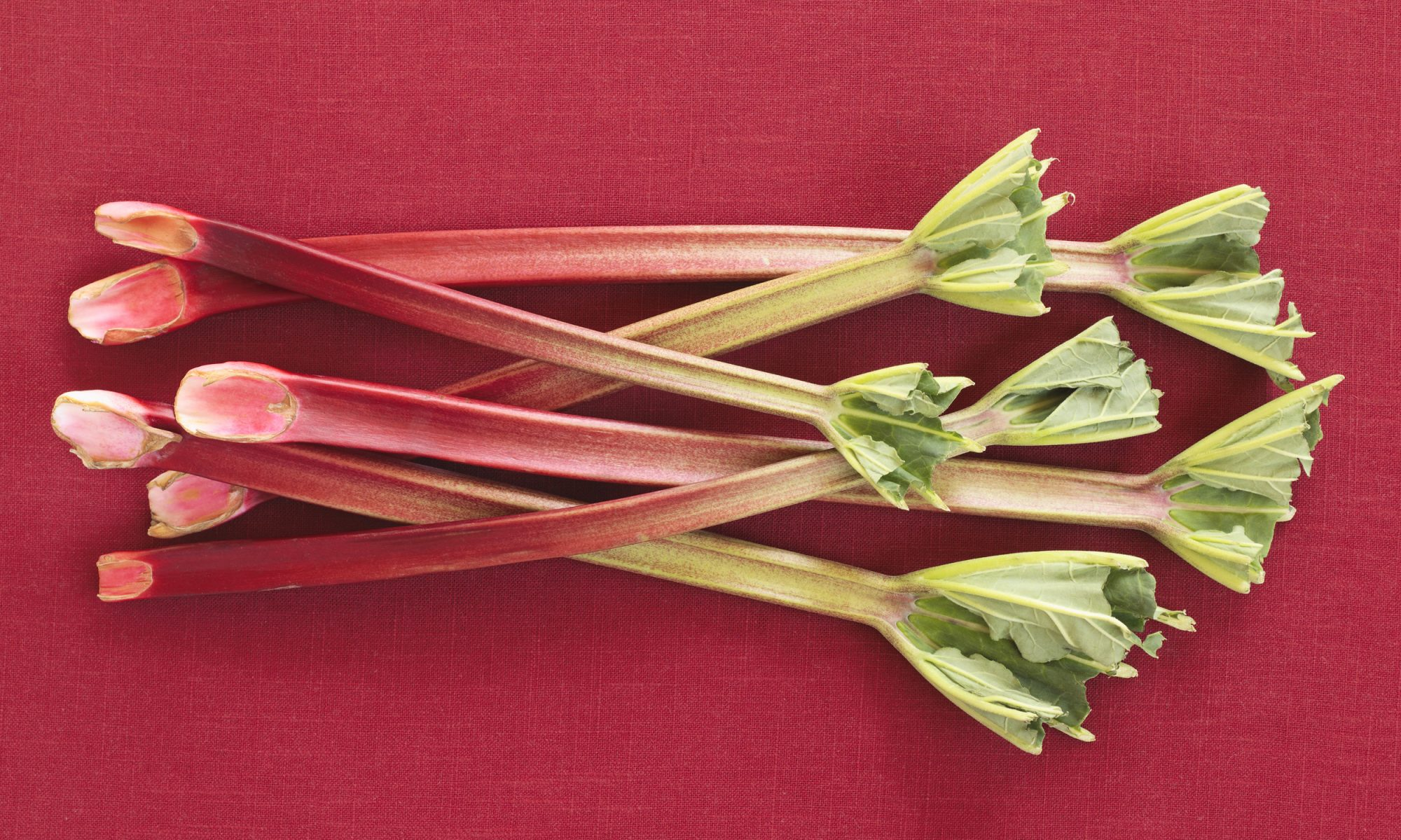 EC: Rhubarb Is the Best Vegetable You Can Eat Right Now