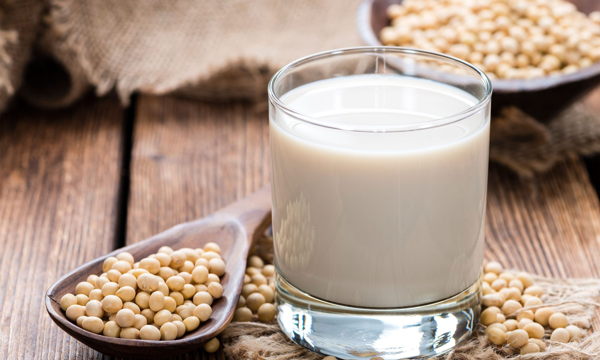 EC: Making Soy Milk Is a Lot Easier Than You Thought