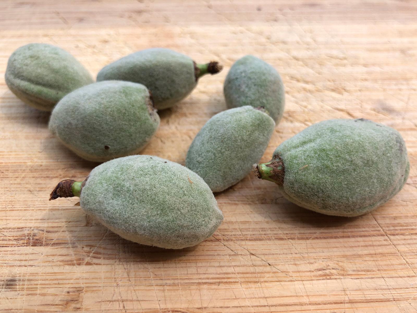 green-almonds.jpg