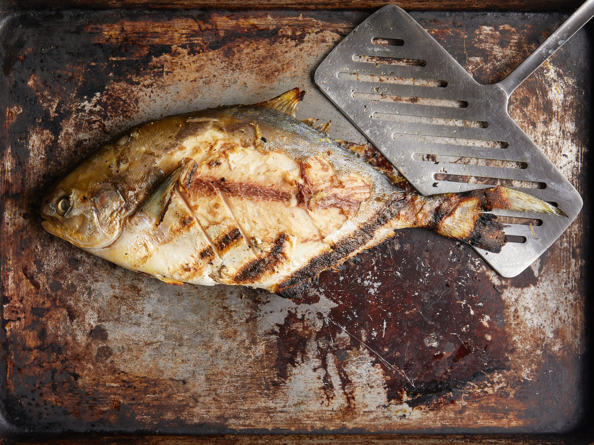 Mr Steak Grill Review Fish Image