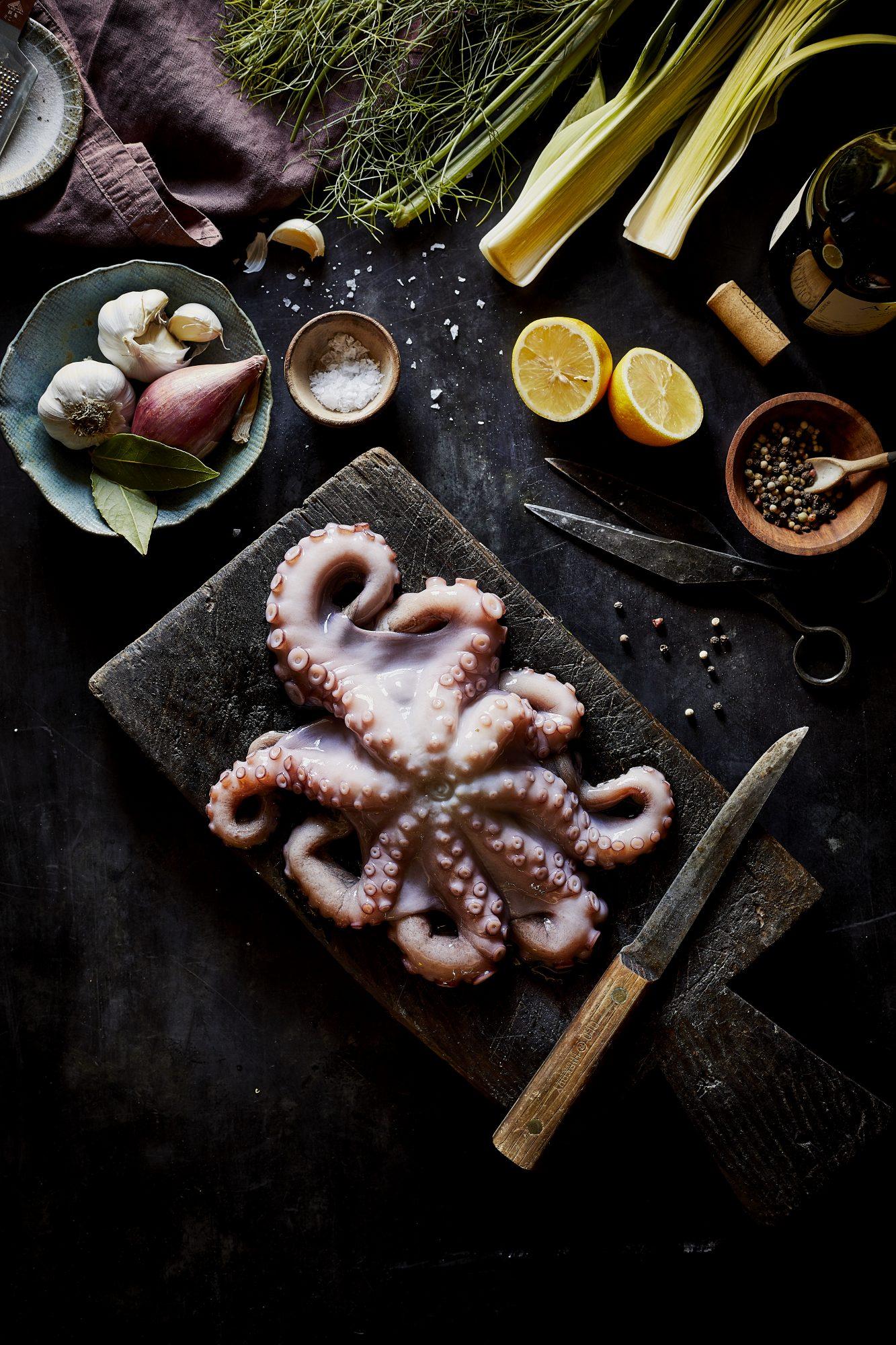 octopus prep image