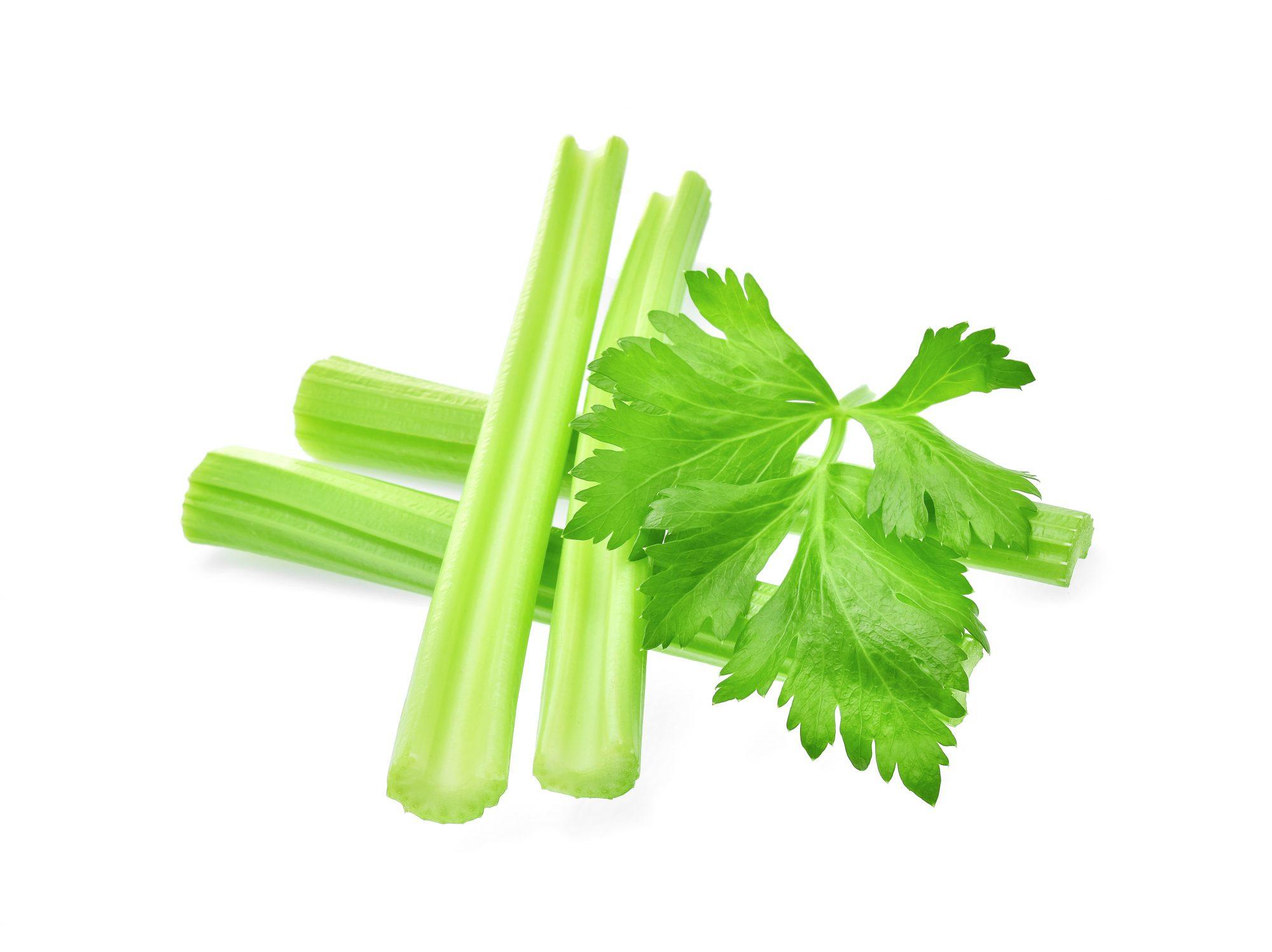 Mom Versus Celery