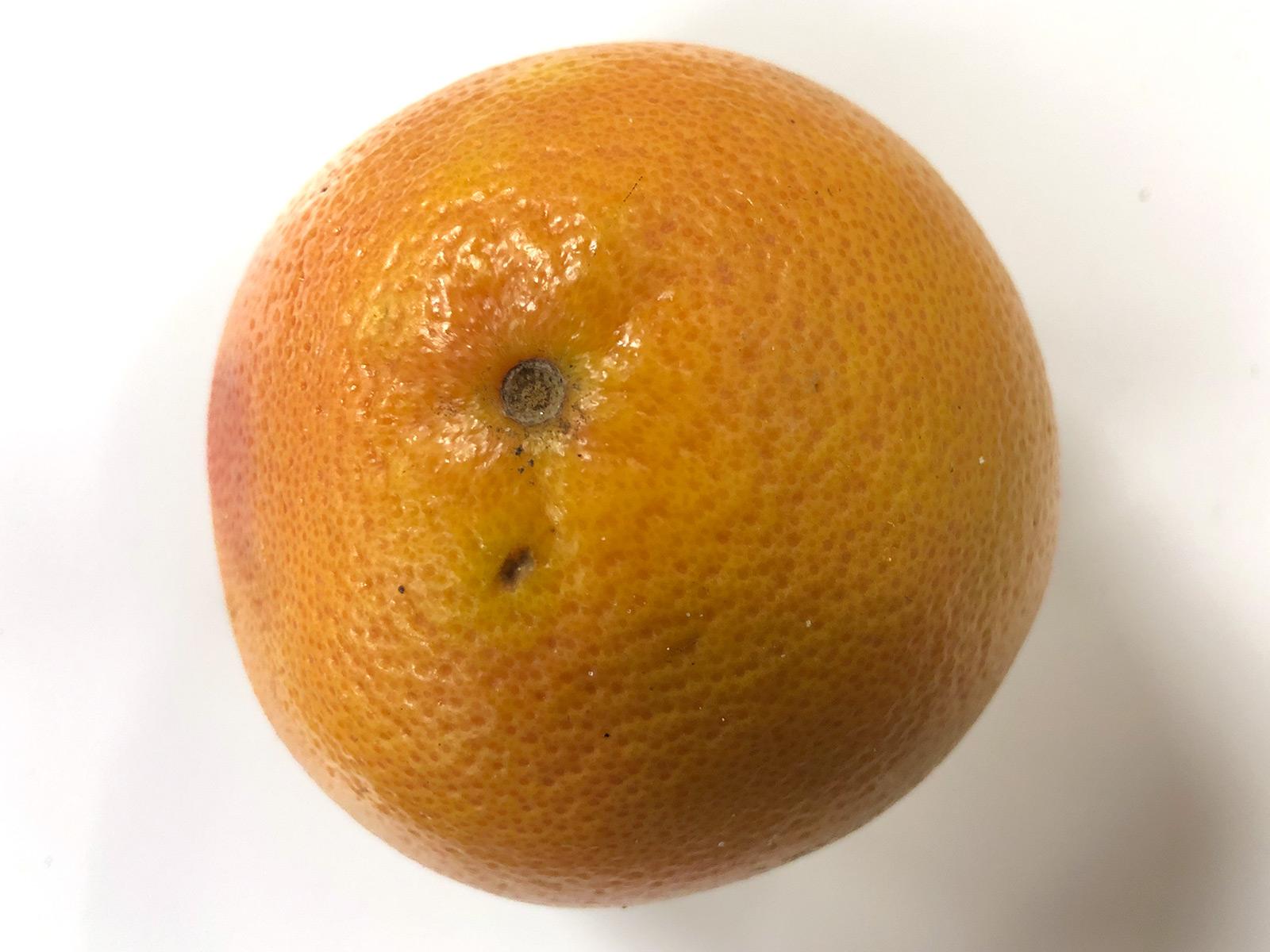 red-grapefruit.jpg