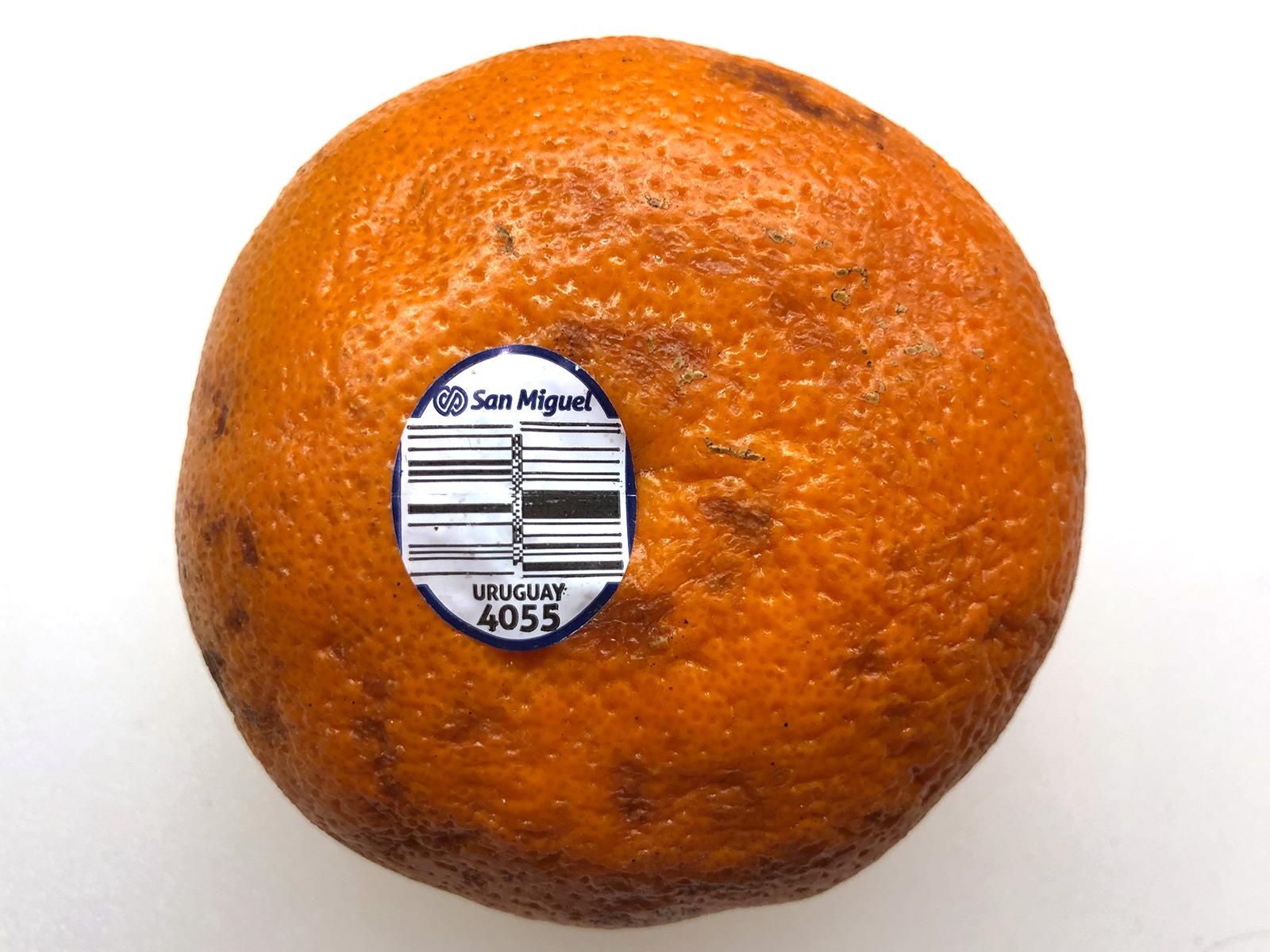 4055-tangerine-uruguay.jpg
