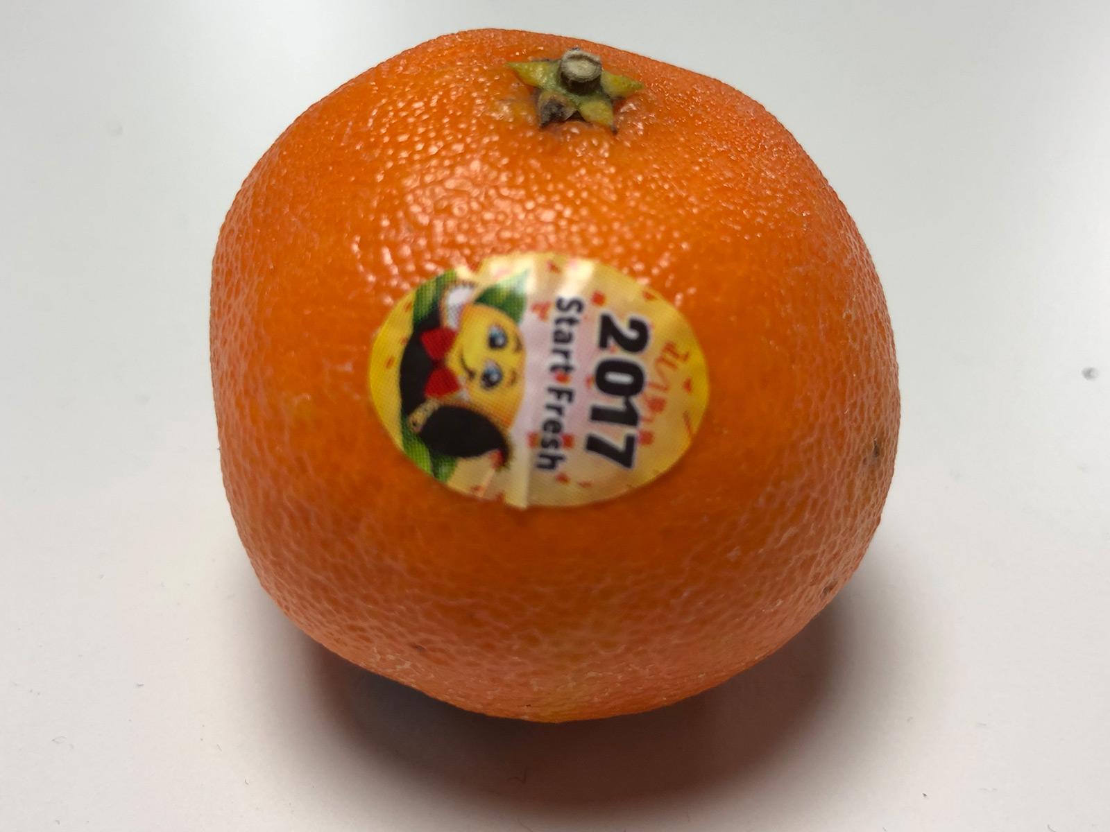 cutie-clementine.jpg
