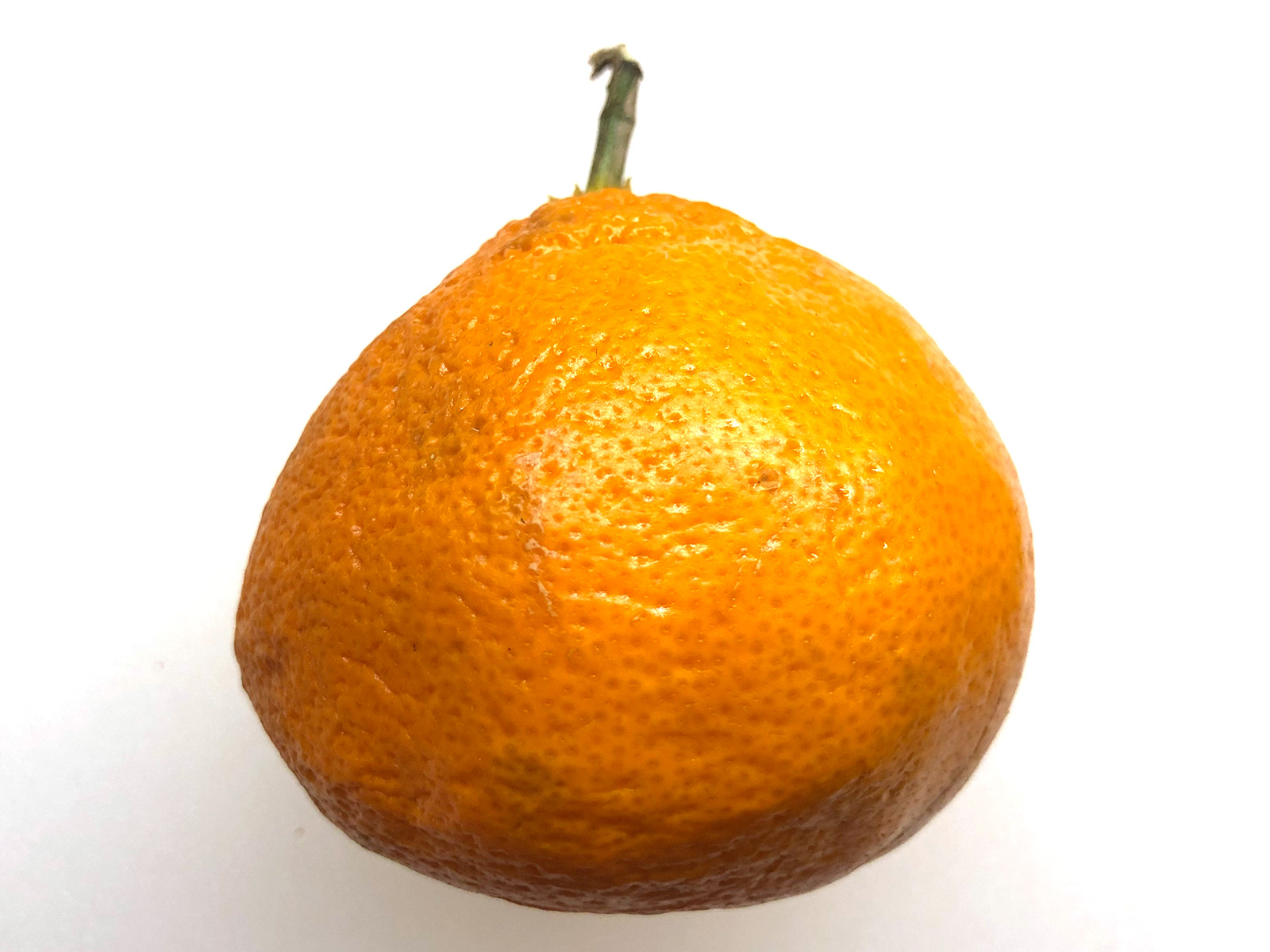 stem-on-mandarin.jpg