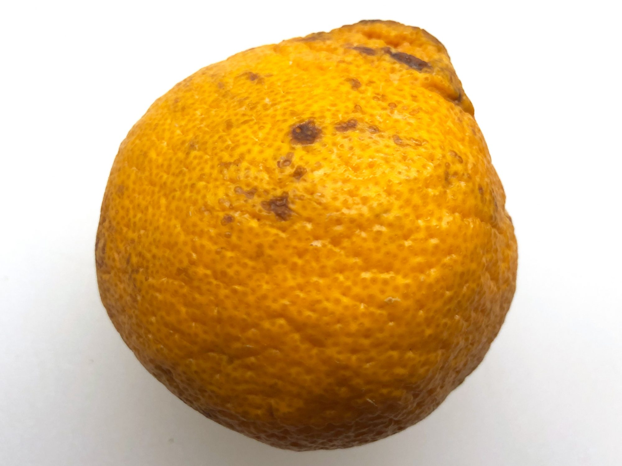 sweet-seedless-mandarin.jpg